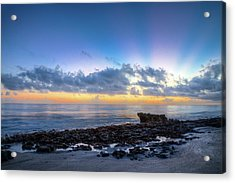 Acrylic Print featuring the photograph Rocky Reef At Low Tide by Debra and Dave Vanderlaan