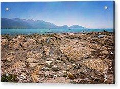 Rocky Shore Kaikoura New Zealand Acrylic Print
