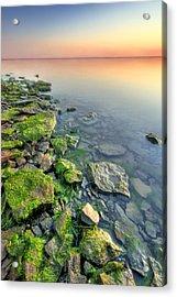 Rocky Shoreline Acrylic Print by Ryan Heffron