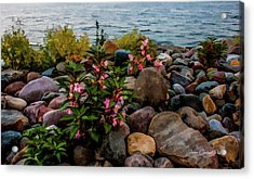 Rocky Shores Of Lake St. Clair- Michigan Acrylic Print by Joann Copeland-Paul