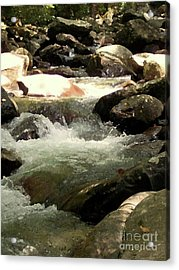 Acrylic Print featuring the mixed media Rocky Stream 4 by Desiree Paquette