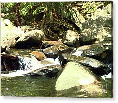 Acrylic Print featuring the mixed media Rocky Stream 5 by Desiree Paquette