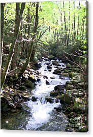 Acrylic Print featuring the mixed media Rocky Stream 6 by Desiree Paquette
