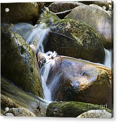 Rocky Water Closeup Acrylic Print by Michael Mooney