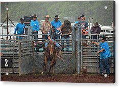 Acrylic Print featuring the photograph Rodeo Bronco by Lori Seaman