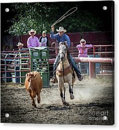 Cowboy In Action#1 Acrylic Print
