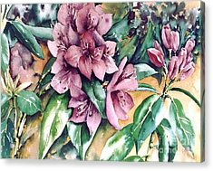Rododendron Time Acrylic Print by Marta Styk