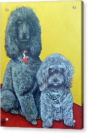 Roger And Bella Acrylic Print by Tom Roderick