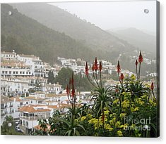 Acrylic Print featuring the photograph Rojo In The Pueblos Blancos by Suzanne Oesterling