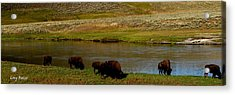 Roll On Roll On Acrylic Print by Greg Patzer