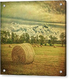 Acrylic Print featuring the photograph Rollin' Hay by Lewis Mann
