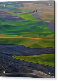 Rolling Fields Of The Palouse Acrylic Print by James Hammond