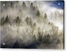 Rolling Fog In Sandy River Valley Acrylic Print by David Gn