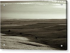 Acrylic Print featuring the photograph Rolling Hills Toned by Thomas Bomstad