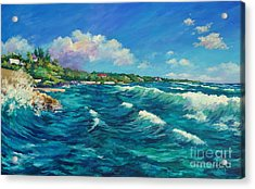 Rolling Waves At Prospect Reef Acrylic Print by John Clark