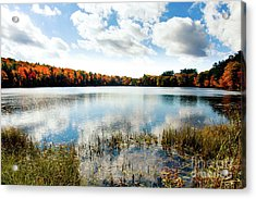 Rollins Pond Pittsfield, N H Acrylic Print