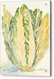 Romaine Acrylic Print by Linda Bourie