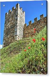 Acrylic Print featuring the photograph Roman Walls And Flowers In Tarragona by Eduardo Jose Accorinti