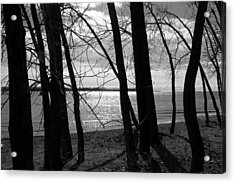Acrylic Print featuring the photograph Romantic Lake by Valentino Visentini