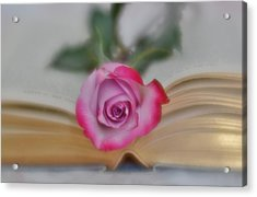 Acrylic Print featuring the photograph Romantic Read 2 by Diane Alexander