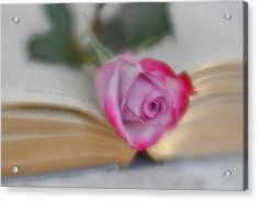 Acrylic Print featuring the photograph Romantic Read by Diane Alexander
