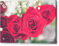 Romantic Red Roses Acrylic Print by Cheryl Baxter