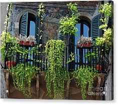 Acrylic Print featuring the photograph Romeo And Juliet  by Frank Stallone