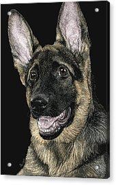Rommel Acrylic Print