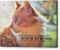 Ronald Quote Acrylic Print by JAMART Photography
