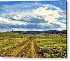 Room To Roam - Wyoming Acrylic Print by L O C