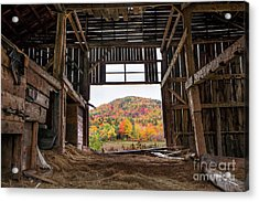 Room With A View Acrylic Print by Benjamin Williamson