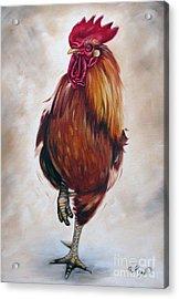 Rooster 17 Of 10 Acrylic Print by Ilse Kleyn