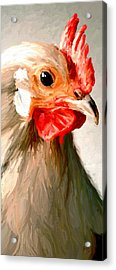 Acrylic Print featuring the digital art Rooster 2 by James Shepherd