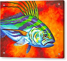 Rooster Fish Acrylic Print