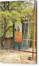 Rooster Water Tank Acrylic Print by Donna Greene