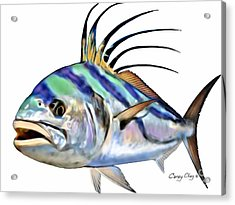 Roosterfish Digital Acrylic Print by Carey Chen