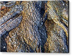 Acrylic Print featuring the photograph Root Waves by Glenn McCarthy Art and Photography