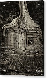 Acrylic Print featuring the photograph Roots In Ruins 5, Ta Prohm, 2014 by Hitendra SINKAR