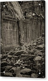 Acrylic Print featuring the photograph Roots In Ruins 6, Ta Prohm, 2014 by Hitendra SINKAR