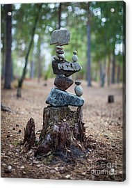 Roots Rock Acrylic Print