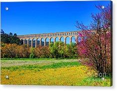 Roquefavour Aqueduct Acrylic Print by Olivier Le Queinec