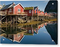 Rorbus With Reflections Acrylic Print by Aivar Mikko