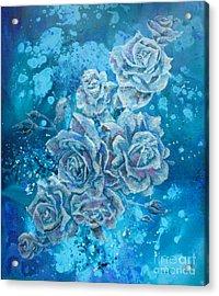 Rosa Stellarum Acrylic Print
