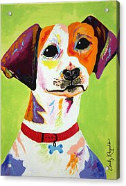 Roscoe The Jack Russell Terrier Acrylic Print by Emily Reynolds Thompson