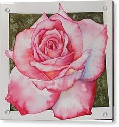 Rose 3 Acrylic Print
