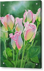 Rose Array Acrylic Print by Sharon Freeman