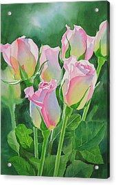 Rose Array Acrylic Print by Sharon Freeman