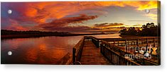 Rose Colored Classes Acrylic Print by David Smith