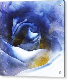 Acrylic Print featuring the photograph Rose - Daydreams - Dreamscape by Janine Riley