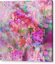Rose Devas Acrylic Print